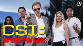 CSI-Westwijk-272x153.png