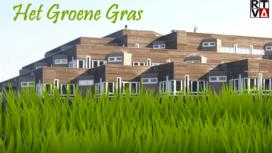 Het-Groene-Gras-272x153.png