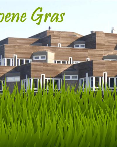 Het-Groene-Gras-400x500.png