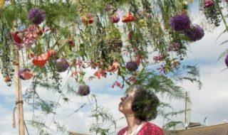 aalsmeer-flower-e1585389498860-320x190.jpg